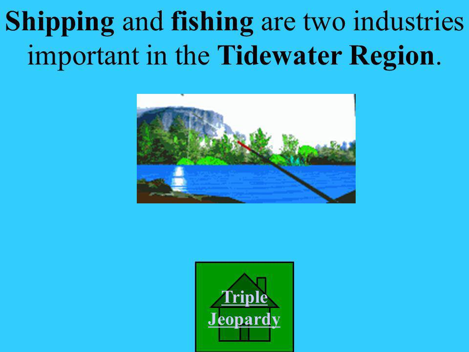 What industry is important in the Tidewater Region? A. Orchards D. Shipping & Fishing C. Poultry farming B. Lumbering Picture Credit: http://www.purce