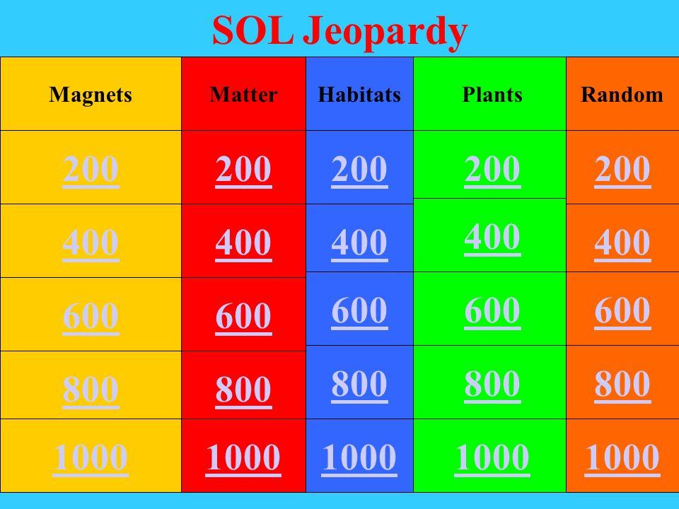 SOL Jeopardy MagnetsMatterHabitatsPlantsRandom 400 200 600 800 1000 200 400 600 800 1000 200 400 600 800 1000 200 400 600 800 1000 200 400 600 800 1000