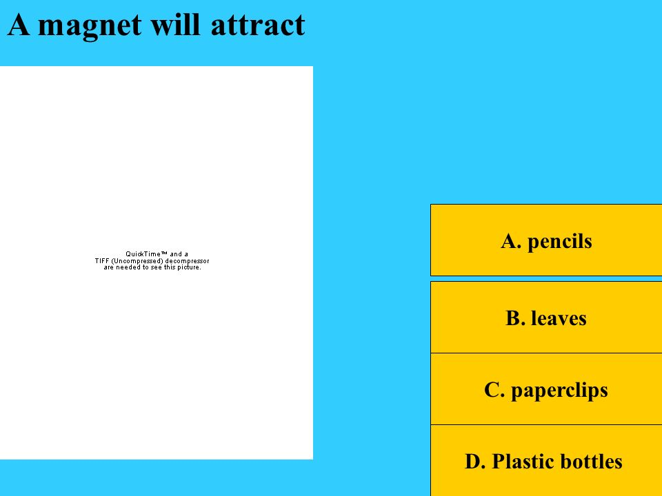 B. leaves A. pencils C. paperclips D. Plastic bottles A magnet will attract
