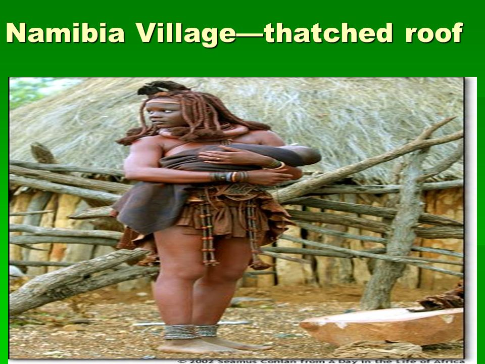Namibia Villagethatched roof