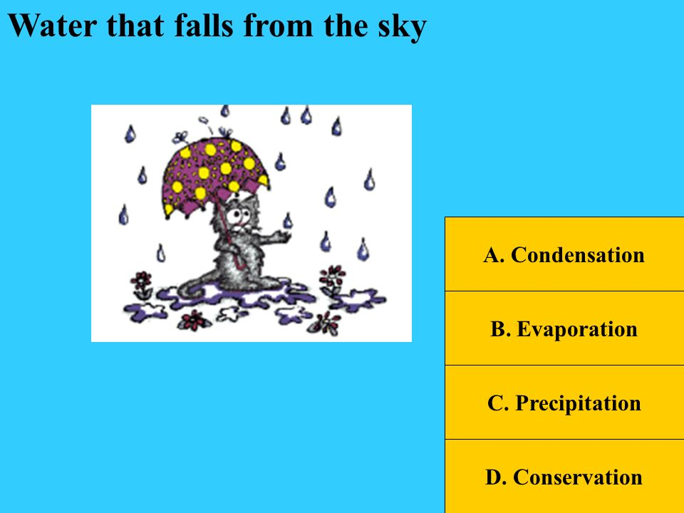 SOL Jeopardy Water CycleClouds Weather Vocab Weather Tools Wild Weather