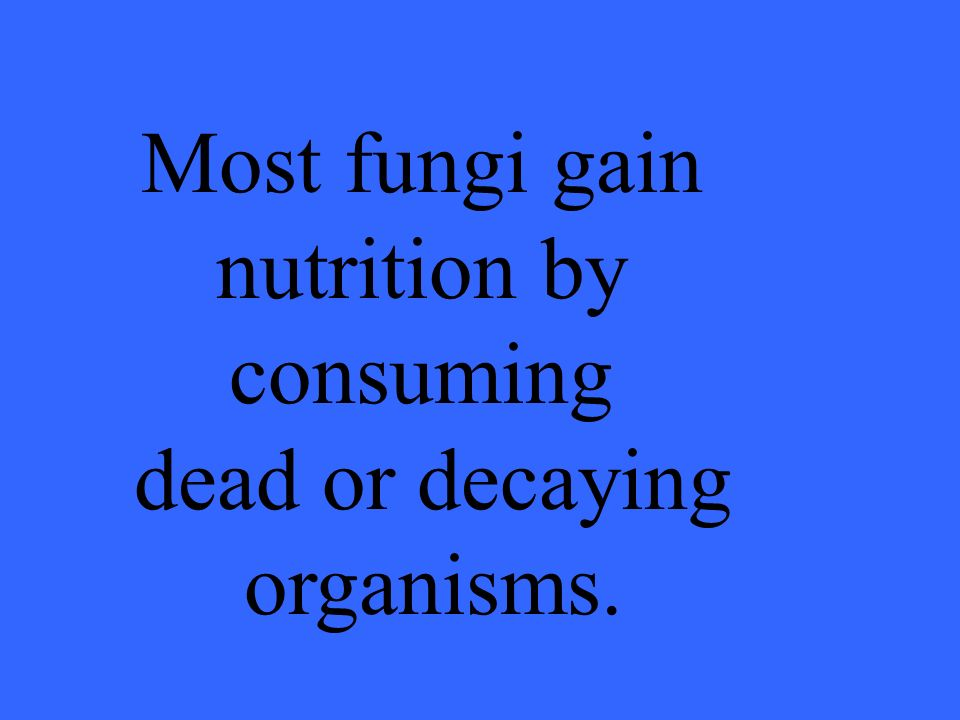 Most fungi gain nutrition by consuming dead or decaying organisms.