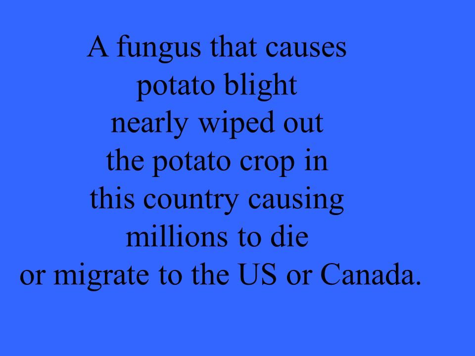 A fungus that causes potato blight nearly wiped out the potato crop in this country causing millions to die or migrate to the US or Canada.
