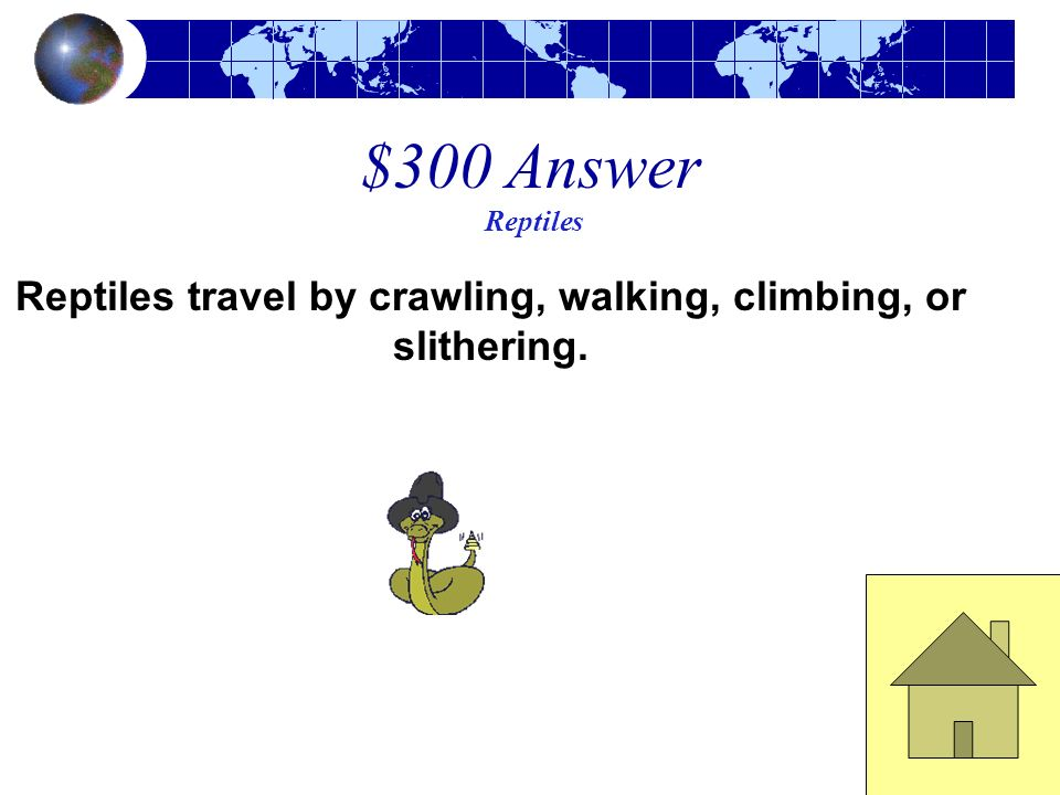 $300 Question Reptiles How do reptiles travel?