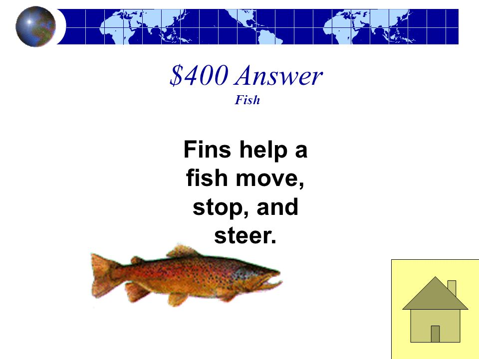 $400 Question Fish These body parts help a fish move, stop, and steer.