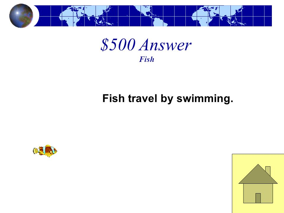 $500 Question Fish This is how fish travel.