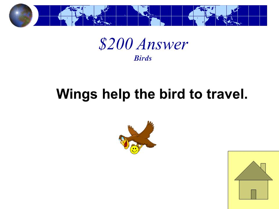 $200 Question Birds What body part helps birds travel?