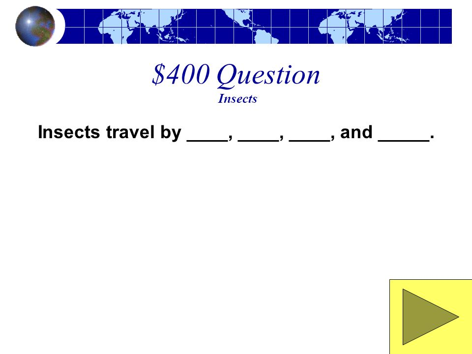 $300 Answer Insects Insects eat plants and other insects.