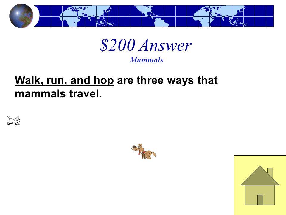 $200 Question Mammals Name 3 ways that mammals travel.