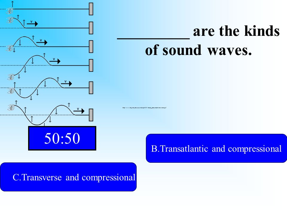 One of them is transverse. C.Transverse and compressional A.