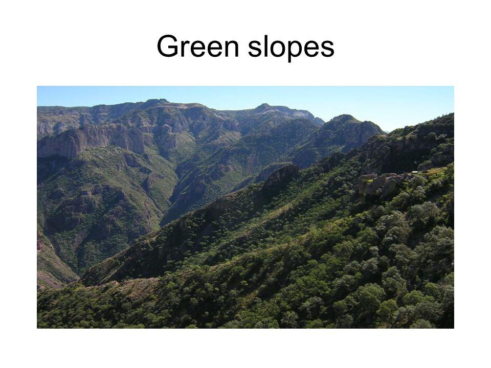 Sierra rocky cliffs