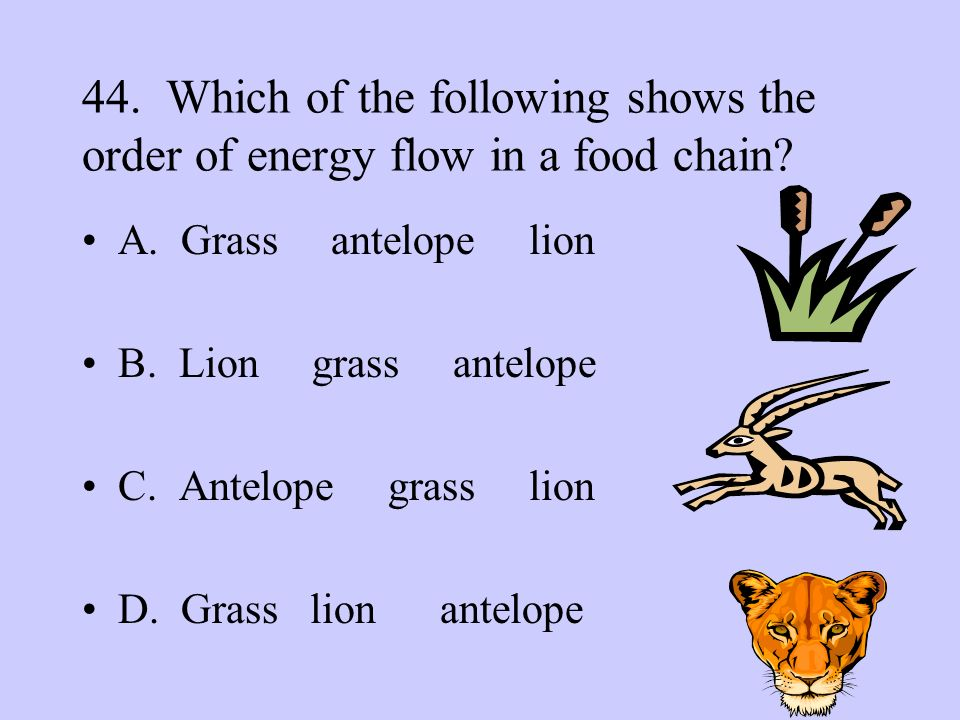 45.Which is an example of how plants and animals depend on each other.
