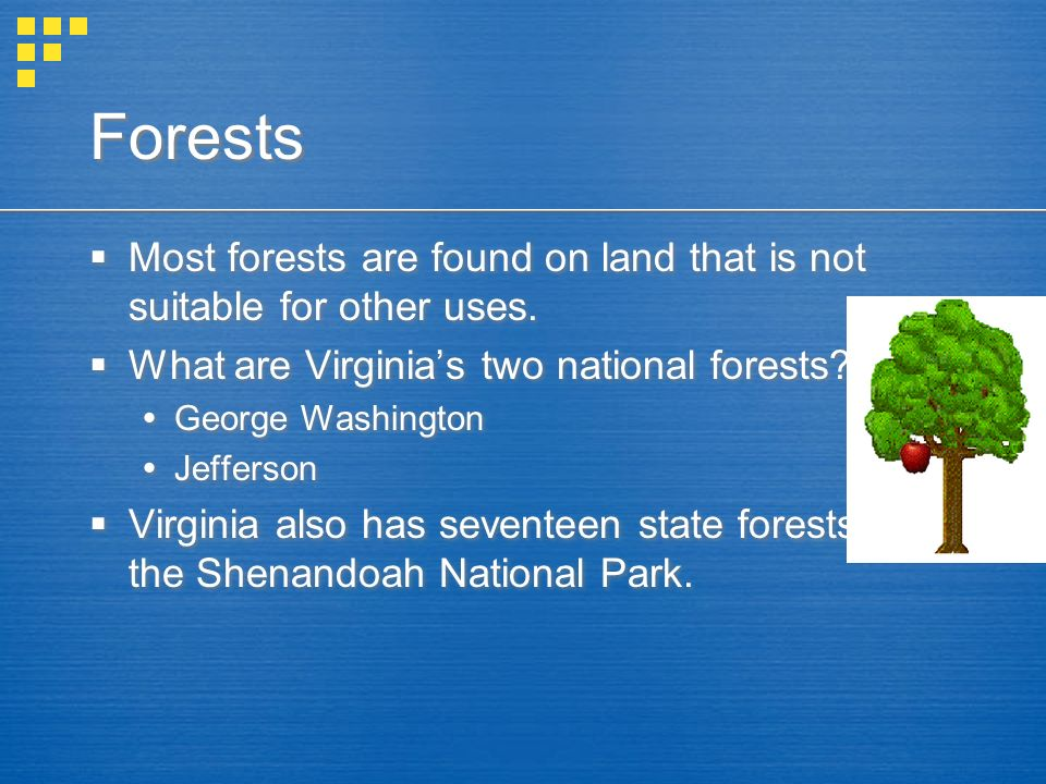 Forests Most forests are found on land that is not suitable for other uses. What are Virginias two national forests? George Washington Jefferson Virgi