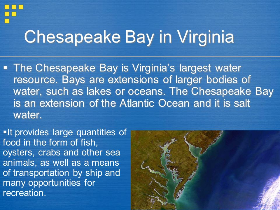 Chesapeake Bay in Virginia The Chesapeake Bay is Virginias largest water resource. Bays are extensions of larger bodies of water, such as lakes or oce