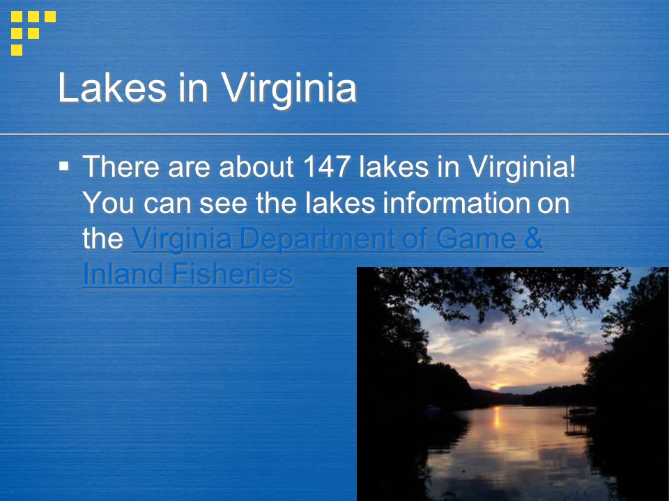 Lakes in Virginia There are about 147 lakes in Virginia! You can see the lakes information on the Virginia Department of Game & Inland FisheriesVirgin