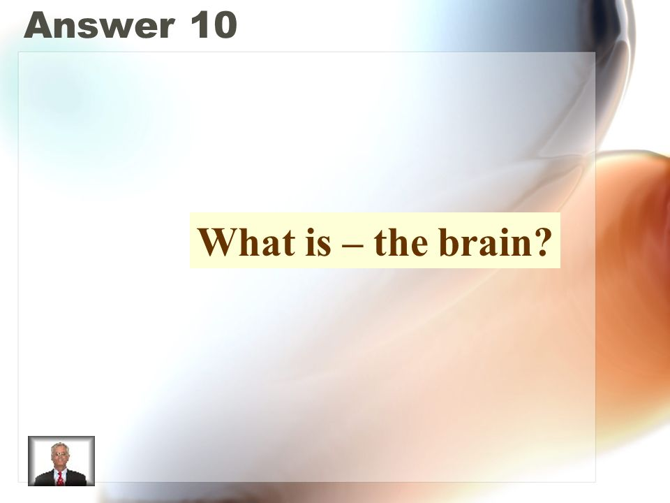 Answer 10 What is – the brain?