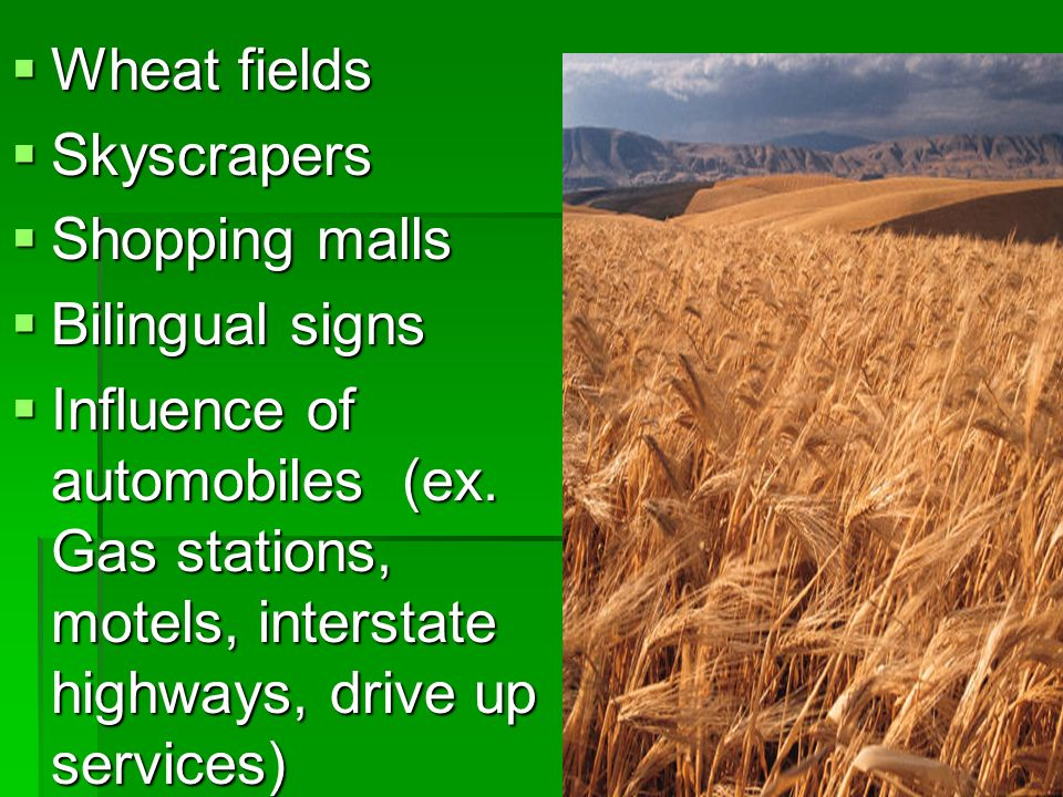 Wheat fields Wheat fields Skyscrapers Skyscrapers Shopping malls Shopping malls Bilingual signs Bilingual signs Influence of automobiles (ex. Gas stat
