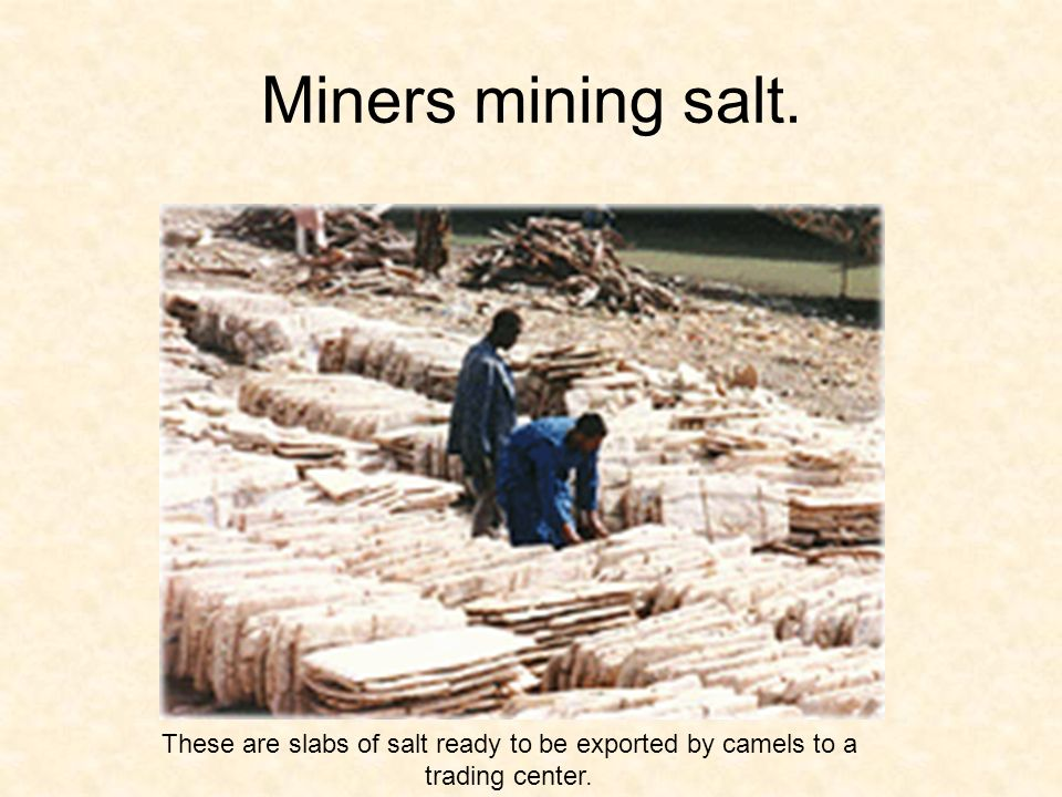 Miners mining salt. These are slabs of salt ready to be exported by camels to a trading center.