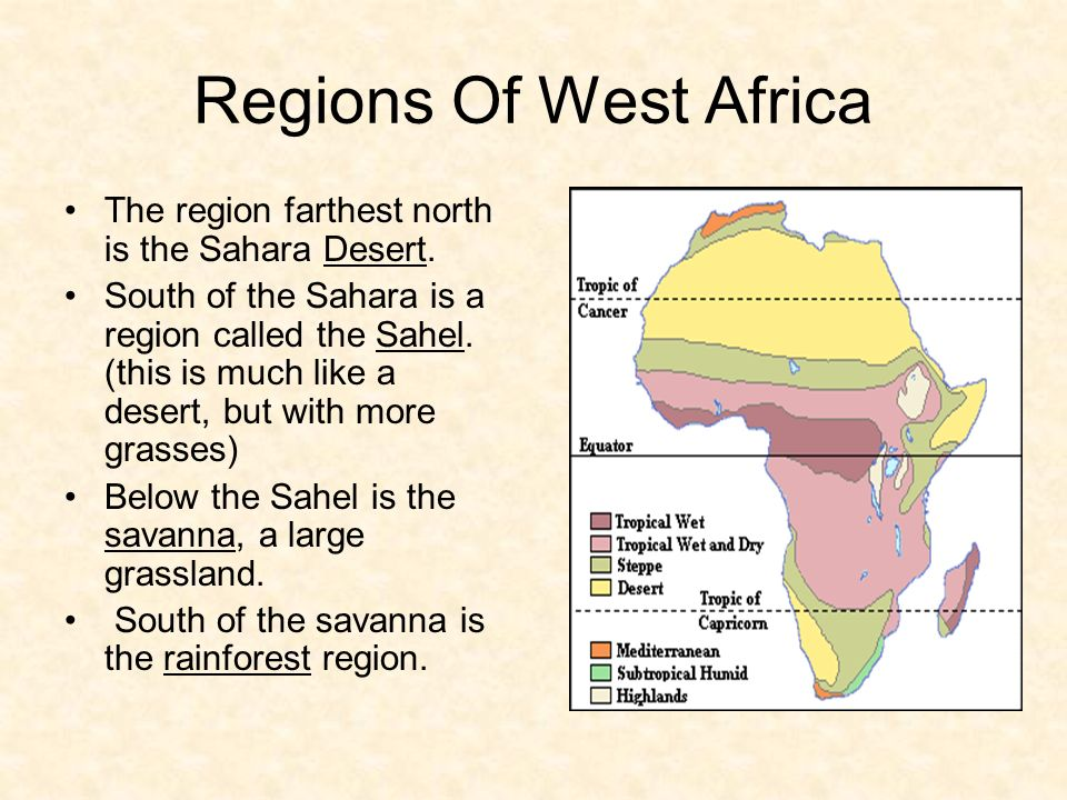 Salt Salt was mined in the Sahara. The slabs were loaded onto camels and sent to trading centers.