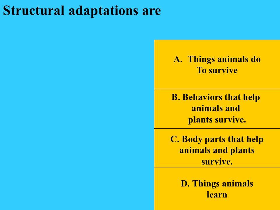 B.Behaviors that help animals and plants survive.