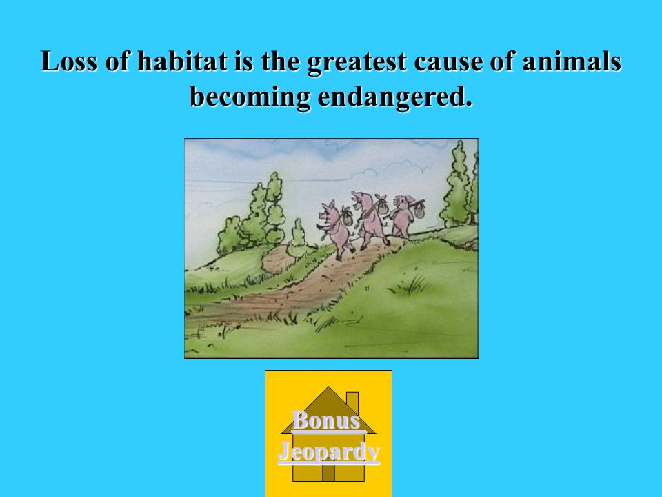 What is the main cause of animals becoming endangered? A. zoos B. disease D. hunting C. Loss of habitat