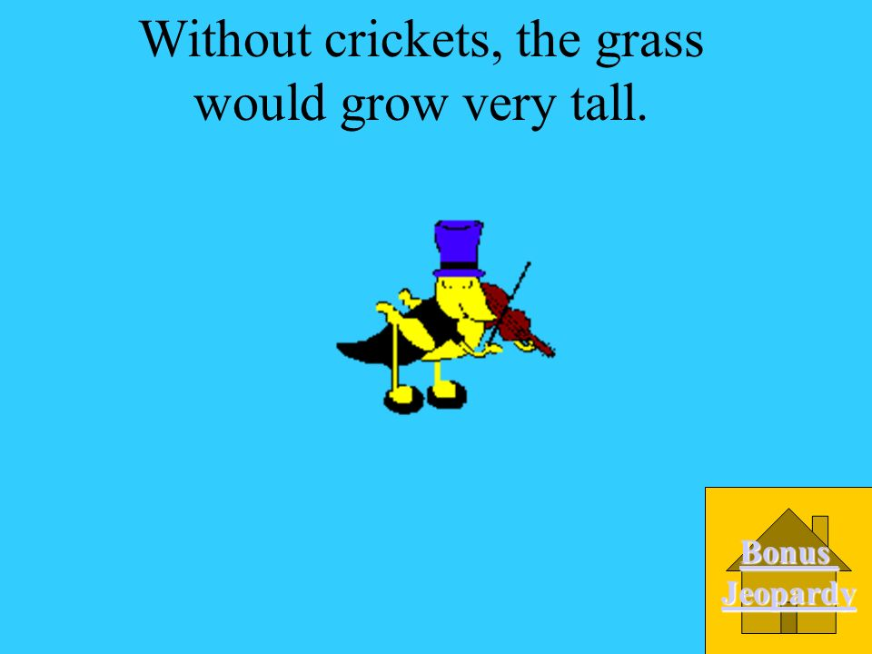 If all of the crickets died in a meadow, what would happen to the grass? A.The grass would grow very tall. B.The grass would Turn yellow. C. The grass
