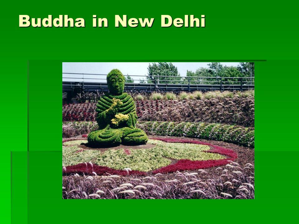 Buddha in New Delhi