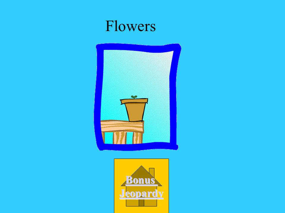 What part of the plant makes seeds for the plant? B. roots C. stem D. leaves A. flower