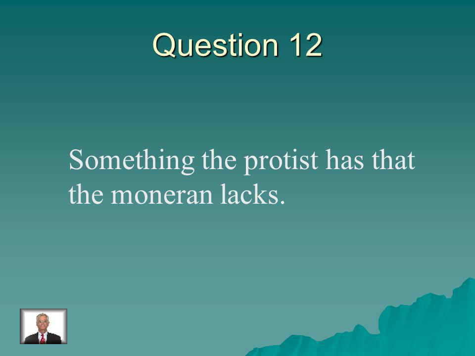 Answer 11 What is –one