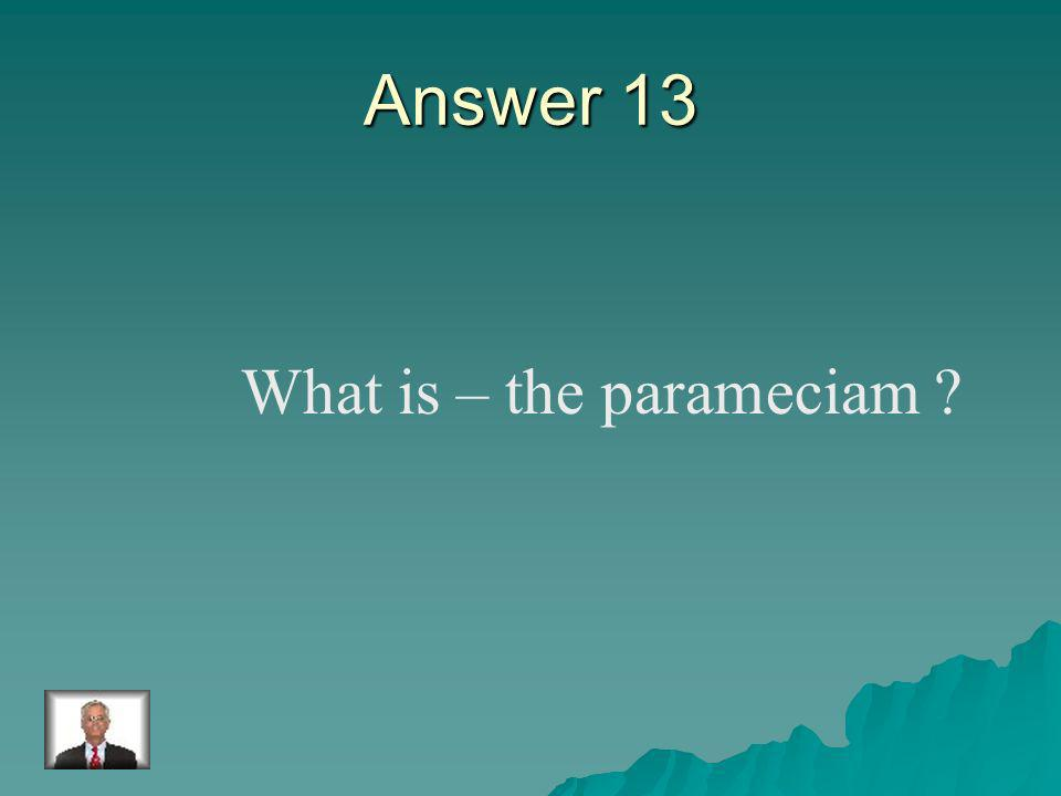 Question 13 The protist which has little hairs (cilia) to help them move.