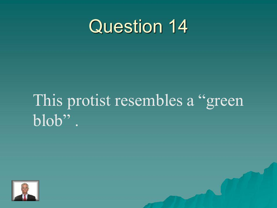 Answer 13 What is – the parameciam