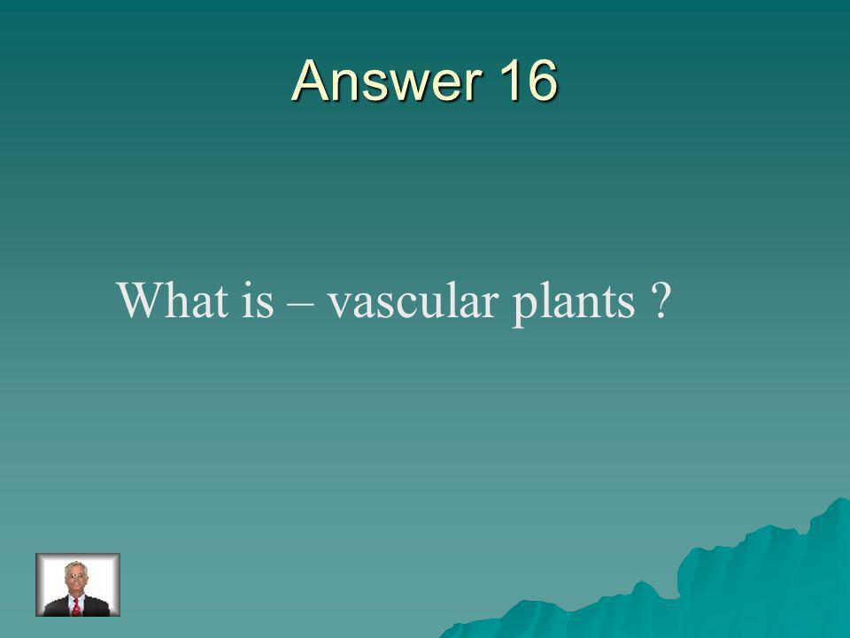 Question 16 The plants which have a tube system.