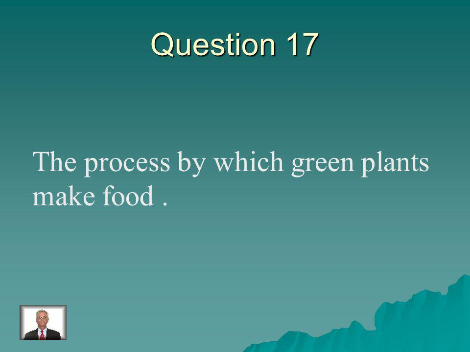 Answer 16 What is – vascular plants