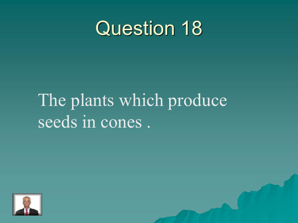 Answer 17 What is – photosynthesis