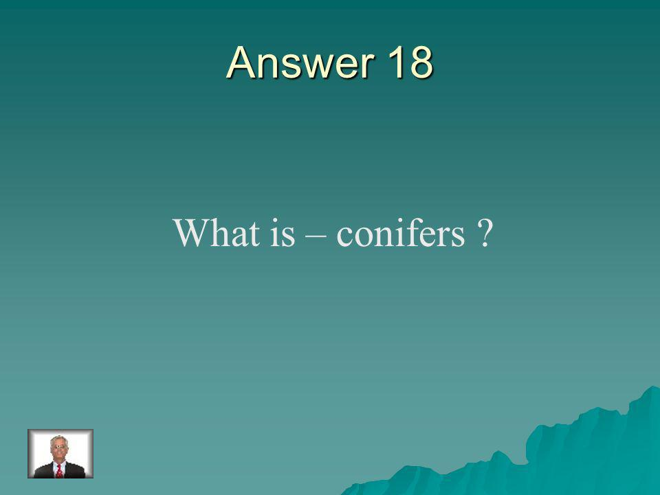 Question 18 The plants which produce seeds in cones.