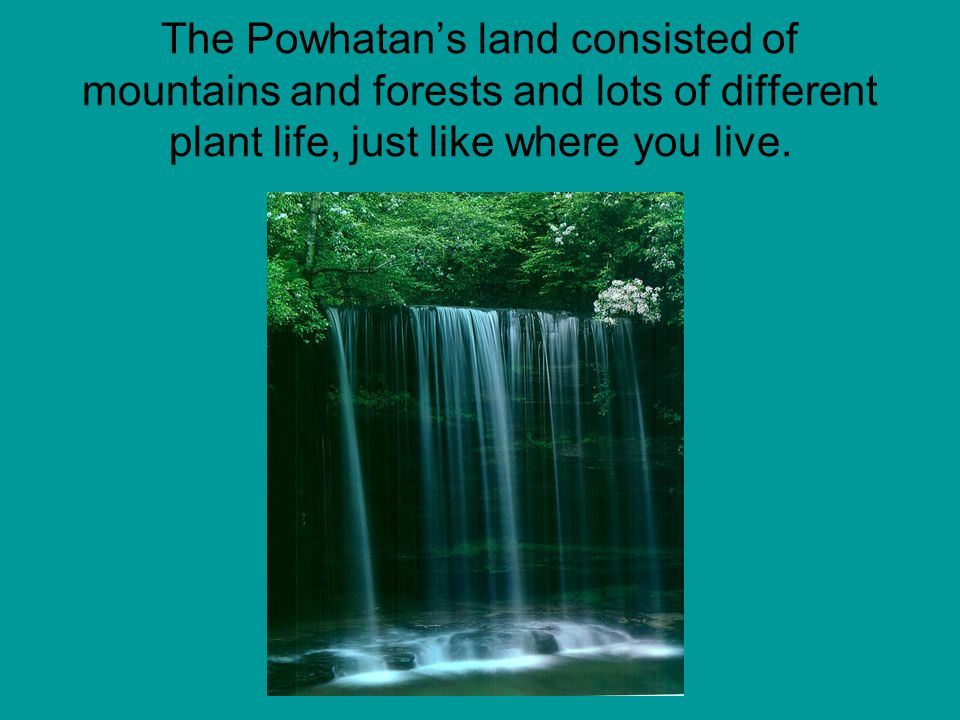 The Powhatans land consisted of mountains and forests and lots of different plant life, just like where you live.