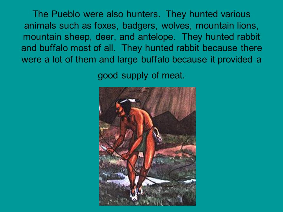 The Pueblo were also hunters. They hunted various animals such as foxes, badgers, wolves, mountain lions, mountain sheep, deer, and antelope. They hun