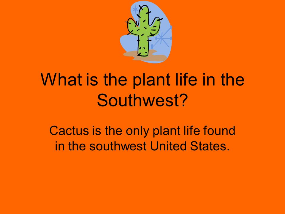 What is the land like in the Southwest.