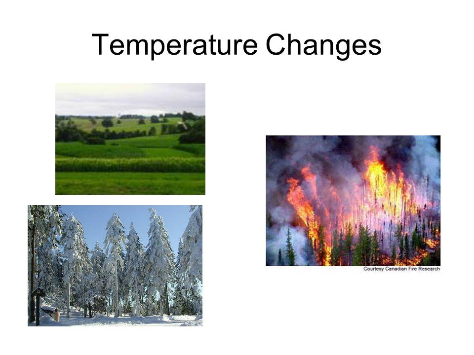 Temperature Changes