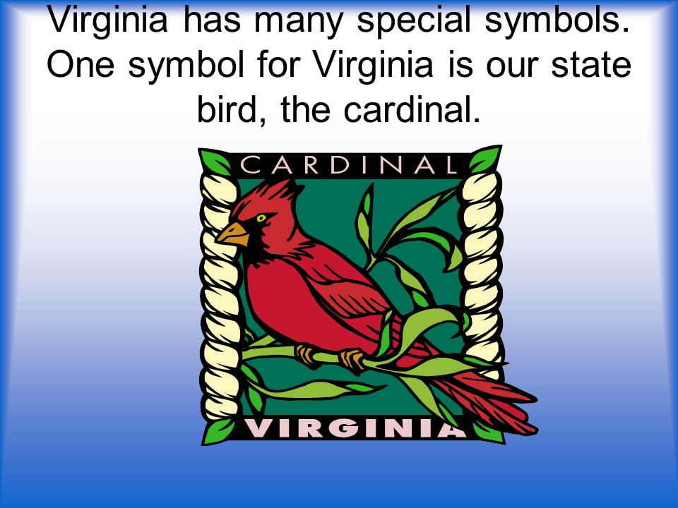Virginia has many special symbols. One symbol for Virginia is our state bird, the cardinal.