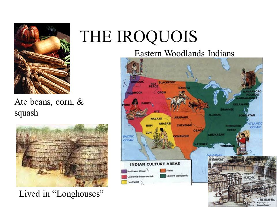 THE IROQUOIS Ate beans, corn, & squash Lived in Longhouses Eastern Woodlands Indians