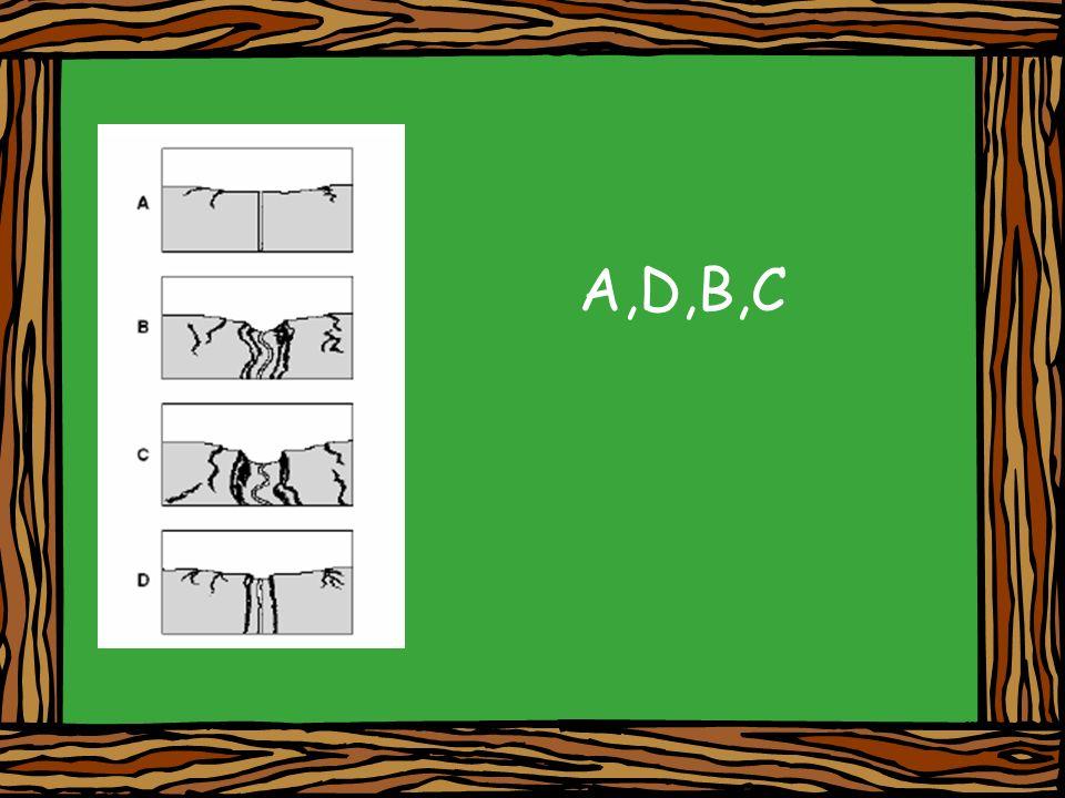 A,D,B,C