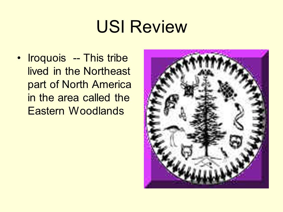 USI Review Iroquois -- This tribe lived in the Northeast part of North America in the area called the Eastern Woodlands
