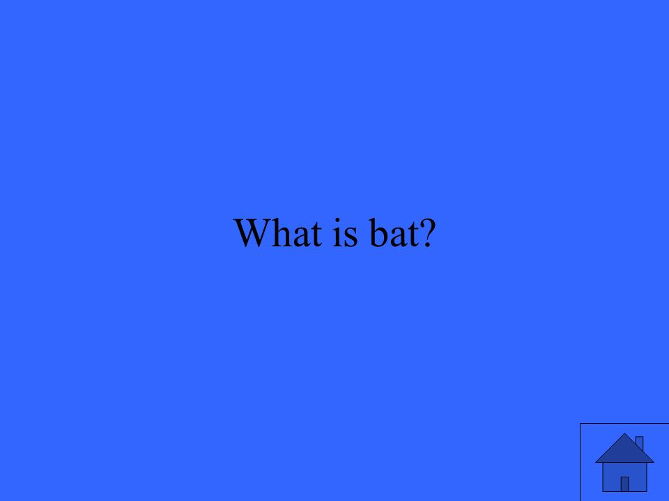 3 What is bat?