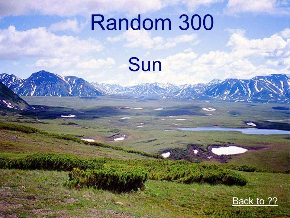 Random 300 Sun Back to