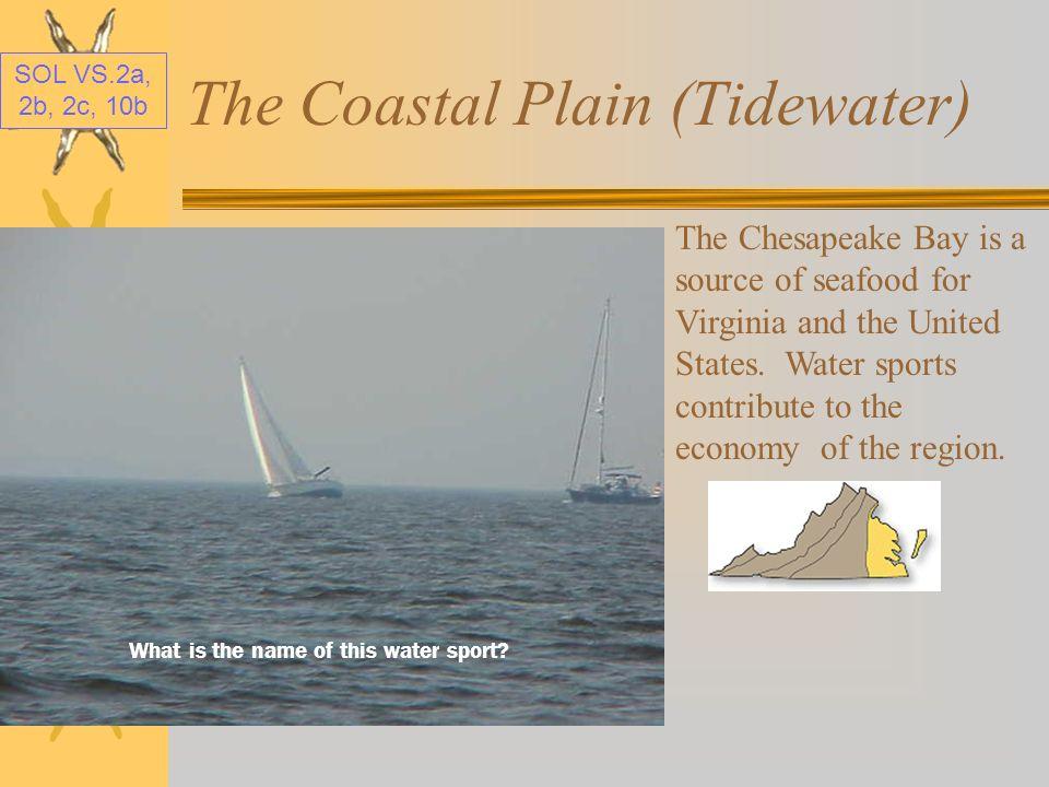 SOL VS.2a, 2b, 2c, 10b The Coastal Plain (Tidewater) The Chesapeake Bay, in the Coastal Plain, borders Virginia on the east. Here is the Chesapeake Ba