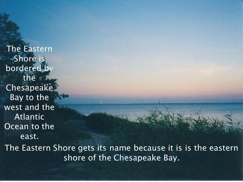 SOL VS.2a, 2b, 2c, 10b Atlantic Ocean The Coastal Plain (Tidewater) contains the Eastern Shore. Virginias Eastern Shore The Eastern Shore is a peninsu