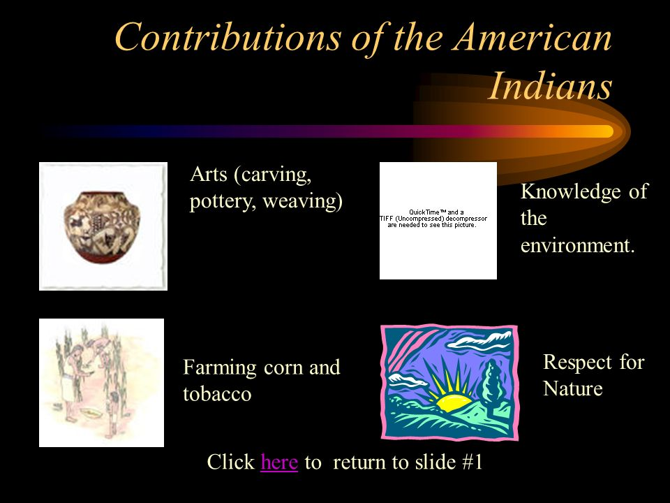Contributions of the American Indians Arts (carving, pottery, weaving) Knowledge of the environment. Respect for Nature Click here to return to slide