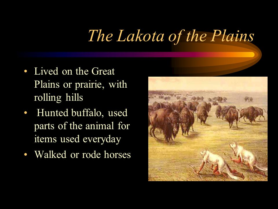 The Lakota Tepee Nomadic people, needed to move to follow herds for hunting Lived in tepees, which could be moved easily Built with poles covered with buffalo hides