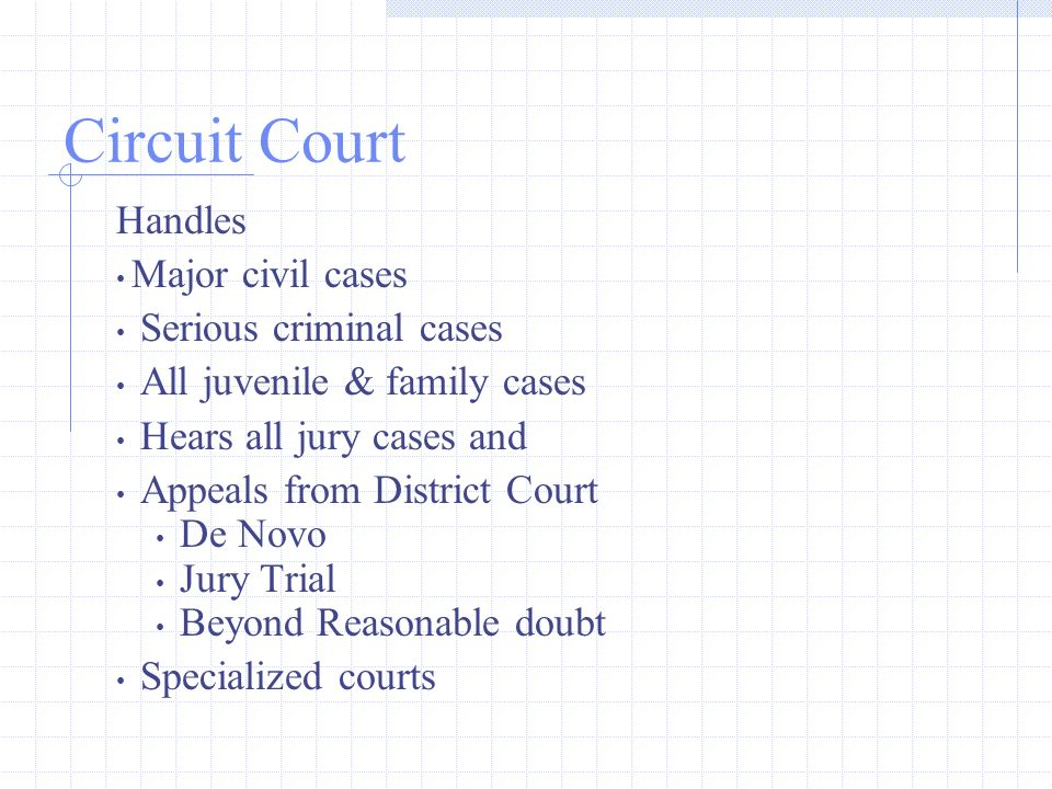Circuit Court Handles Major civil cases Serious criminal cases All juvenile & family cases Hears all jury cases and Appeals from District Court De Novo Jury Trial Beyond Reasonable doubt Specialized courts